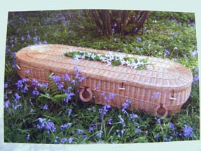Oval Willow Woodland Coffin